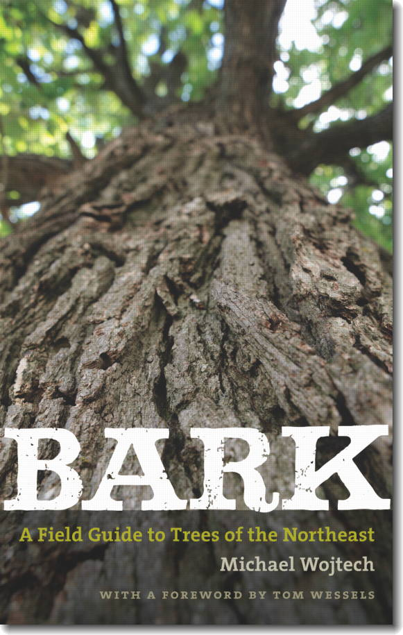 Bark: A Field Guide to Trees of the Northeast, by Michael Wojtech